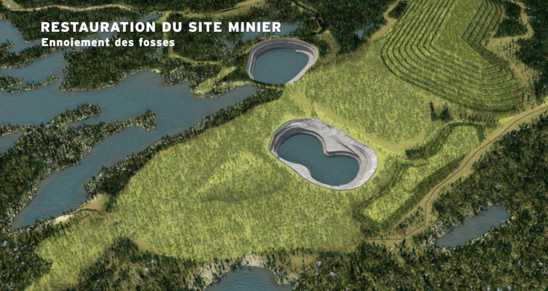 mine-renard-empreinte-environnementale-2