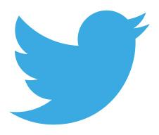 petit-oiseau-twitter
