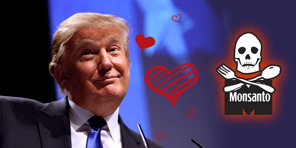 Trump aime Monsanto